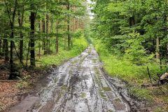 Kuznia-w-Siodelku-Trasa-rowerowa-Chatka-Szreka-Zrodelko-Domek-na-Wodzie-10