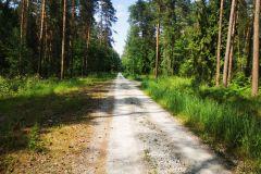 Kuznia-w-Siodelku-Trasa-rowerowa-Chatka-Szreka-Zrodelko-Domek-na-Wodzie-17