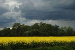 Kuznia-w-Siodelku-Opole-Sluza-2