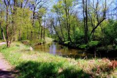 Park-Krajobrazowy-Cysterskie-Kompozycje-Krajobrazowe-Rud-Wielkich-10