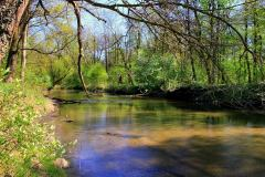 Park-Krajobrazowy-Cysterskie-Kompozycje-Krajobrazowe-Rud-Wielkich-3