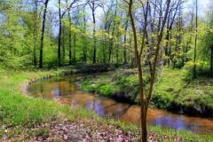 Park-Krajobrazowy-Cysterskie-Kompozycje-Krajobrazowe-Rud-Wielkich-8
