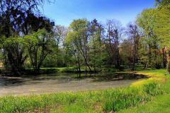 Park-Krajobrazowy-Cysterskie-Kompozycje-Krajobrazowe-Rud-Wielkich-9