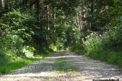 Kuznia-w-Siodelku-Trasy-rowerowe-Kosorowice-2