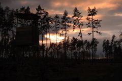 Kuznia-w-siodelku-Las-jesienia-12