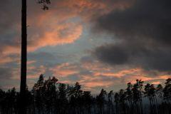 Kuznia-w-siodelku-Las-jesienia-16