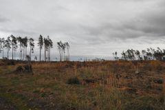 Kuznia-w-siodelku-Las-jesienia-3