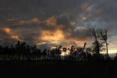 Kuznia-w-siodelku-Las-jesienia-5