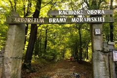 Kuznia-w-siodelku-Las-Obora-2