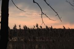 Kuznia-w-siodelku-Lezczok-7