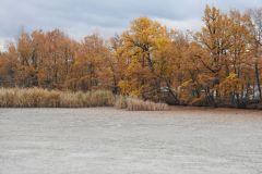 Kuznia-w-Siodelku-Rezerwat-Lezczok-Listopad-15