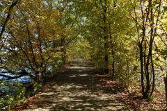 Kuznia-w-Siodelku-Rezerwat-Lezczok-Pazdziernik-16