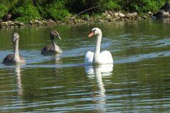 Kuznia-w-Siodelku-Rezerwat-Lezczok-Wrzesien-30