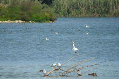 Kuznia-w-Siodelku-Rezerwat-Lezczok-Wrzesien-8