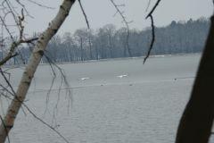 Kuznia-w-siodelku-Rezerwat-przyrody-Lezczok-Luty-5