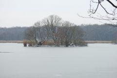 Kuznia-w-siodelku-Rezerwat-przyrody-Lezczok-Luty-9
