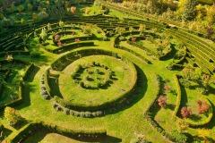 Arboretum-Bramy-Morawskiej-1