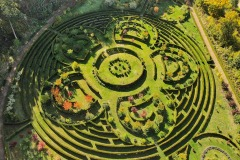 Arboretum-Bramy-Morawskiej-6