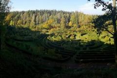 Arboretum-Bramy-Morawskiej-7