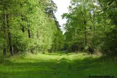 Kuznia-w-Siodelku-Trasa-Rowerowa-Opole-Zbiornik-Malina-Opole-4