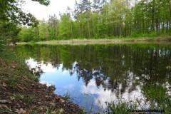Kuznia-w-Siodelku-Trasa-Rowerowa-Opole-Zbiornik-Malina-Opole-6