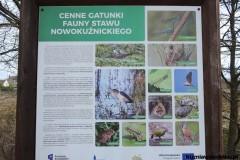 Kuznia-w-siodelku-Rezerwat-Przyrody-Staw-Nowokuznicki-6