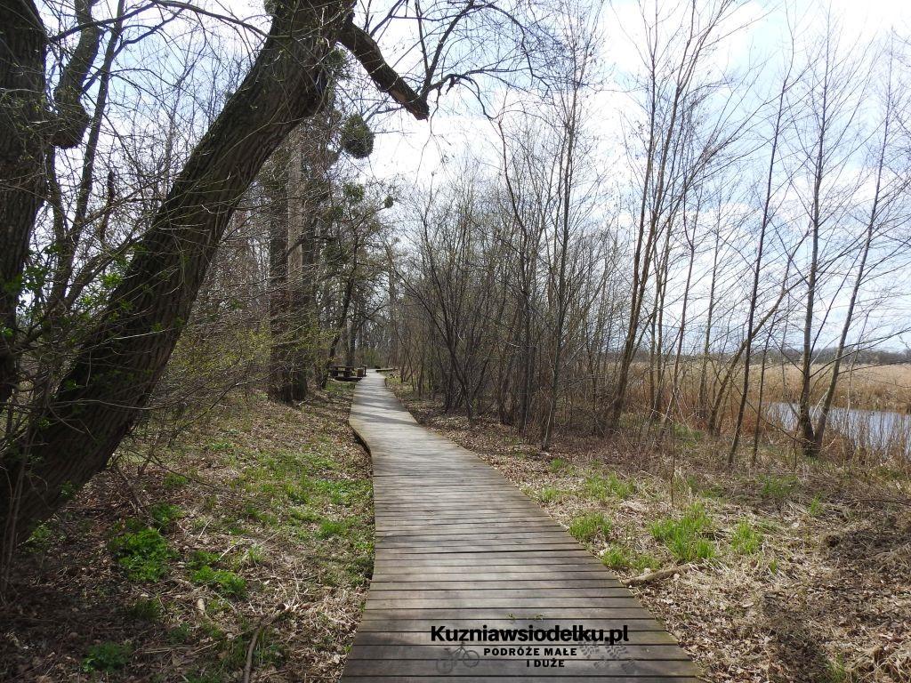 1_Kuznia-w-siodelku-Rezerwat-Przyrody-Staw-Nowokuznicki-1