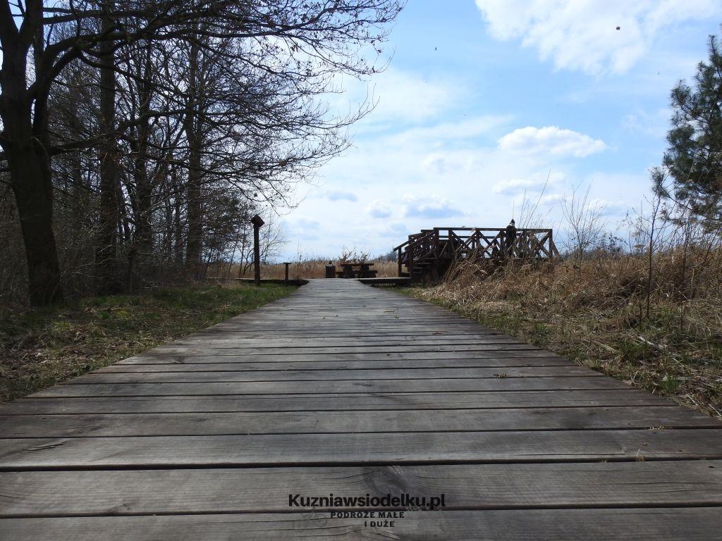 Kuznia-w-siodelku-Rezerwat-Przyrody-Staw-Nowokuznicki-4