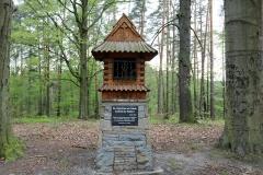 Góra-Zamkowa-Schlossberg-219-m.n.p.m
