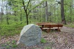 Kamień-pamiątkowy-na-skrzyżowaniu-w-lesie