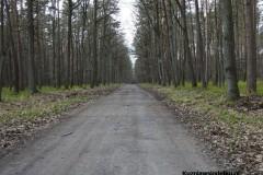 Kuznia-w-Siodelku-Spacer-do-Stawu-Sangow-1