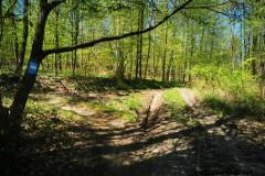 Kuznia-w-Siodelku-Trasa-rowerowa-Strzelinskie-Single-Tracki-7