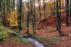Kuznia-w-siodelku-Szwajcaria-Rachowicka-19