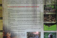 Kuznia-w-Siodelku-Szwajcaria-Rachowicka-2
