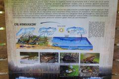 Kuznia-w-Siodelku-Szwajcaria-Rachowicka-7