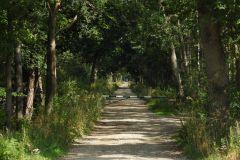 Kuznia-w-Siodelku-Trasa-rowerowa-Nad-Jezioro-Srednie-4