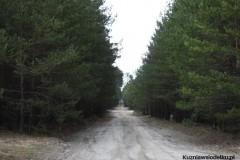 Kuznia-w-Siodelku-Zwiedzanie-Opolszczyzny-Wydmy-w-Kosowcu-3