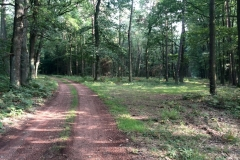Trasa rowerowa Babiczok 2