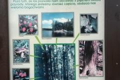Kuznia-w-Siodelku-Tablice-informacyjne-16