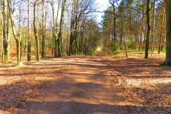 Trasa rowerowa Hubertus 3