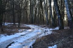 Kuźnia w Siodełku - Łężczok 12