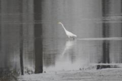 Kuznia w Siodelku - Lezczok Listopad 12