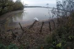 Kuznia w Siodelku - Lezczok Pazdziernik 1