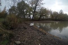 Kuznia w Siodelku - Lezczok Pazdziernik 2
