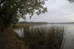 Kuznia w Siodelku - Lezczok Pazdziernik 6