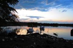 Kuznia w Siodelku - Lezczok 27