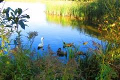 Kuznia w Siodelku - Lezczok Wrzesien 1