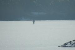 Kuznia w Siodelku - Lezczok Luty 6