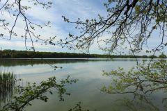 Kuznia-w-Siodelku-Rezerwat-Lezczok-Kwiecien-8