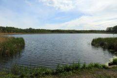 Kuznia-w-Siodelku-Rezerwat-Lezczok-Kwiecien-9
